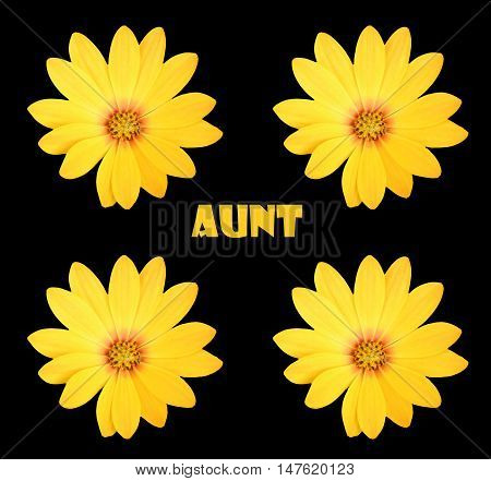 Abstract creative aunt floral greeting card scene