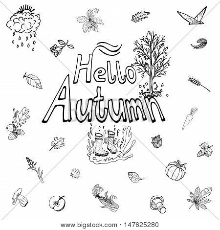 Hello Autumn. Hand-Lettering Logo. Hand Drawn Icons. Drawings Leaves, Apple, Carrot, Pumpkin, Mushroom, Acorn, Maple, Chestnut, Gumboots for a Fall Mood Design. Sketch illustration. Doodles Vector.