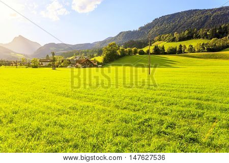 Evening at Green grass field in Austrian Alps