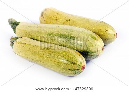 ripe fresh zucchini useful as part of the food