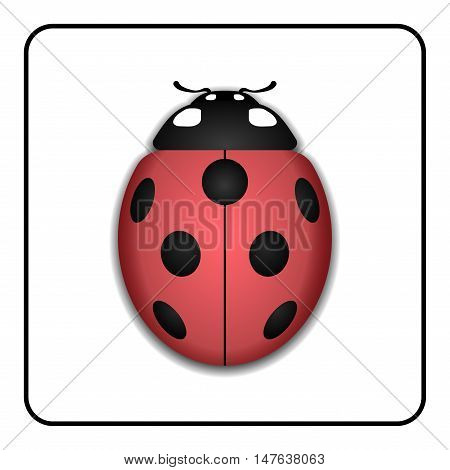 Ladybug small icon. Red lady bug sign isolated on white background. 3d volume design. Cute colorful ladybird. Insect cartoon beetle. Symbol of nature spring or summer. Vector illustration