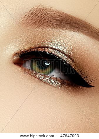 Elegance Close-up Of Beautiful Female Eye With Fashion Eye Shado
