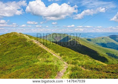Narrow Path Down The Mountain