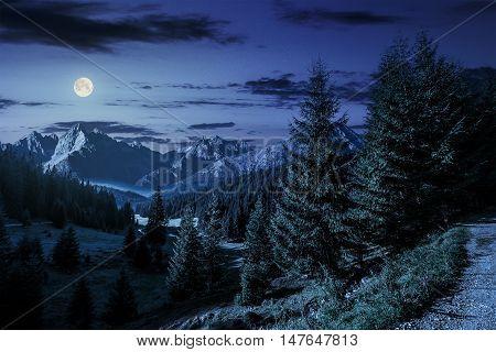Valley Between At Night