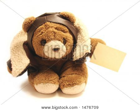 Teddy Bear Pilot With A Blank Note Isolated In A White Background