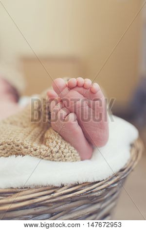 Closeup of legs of a newborn baby peeking out of light brown knitted blankets,which the baby covered from the waist up,the baby sleeps on a white soft blanket in a large wicker basket