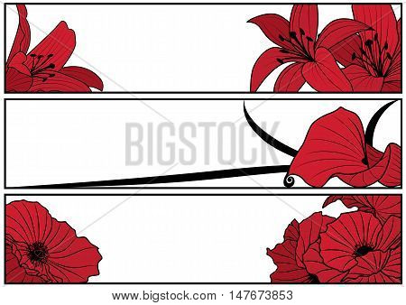 set of vector floral banners with lily and poppy in red black and white colors