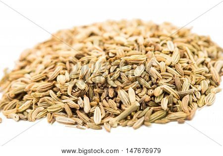 india spice fennel on a white background