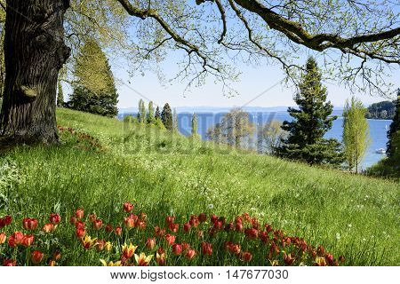 View of lake constance from the island Mainau, Lake of Constance, Germany