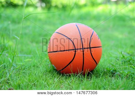 Orange basketball place on the green grass.