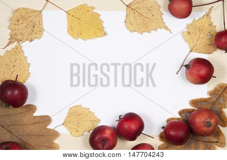 Autumn leaves and apples frame border background with the place for text. Top view.