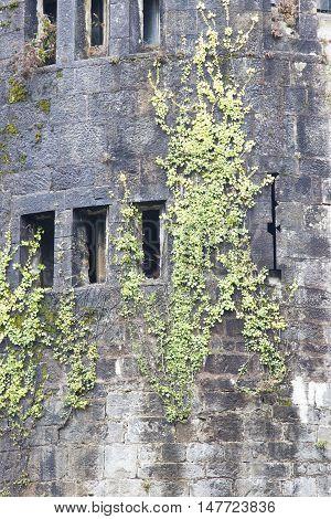 Detail Of The Butron Castle, Spain.