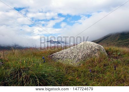 Summer Landscape In Altay Mountains, Russia