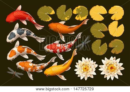 Vector set of koi fish and lotus flowers and leaves