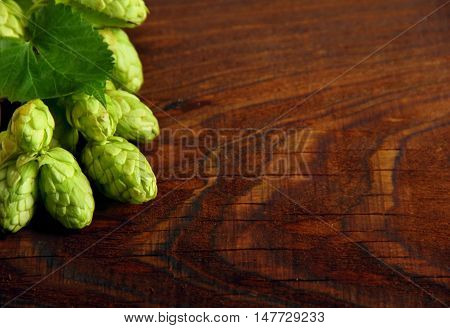 Fresh green hops on a wooden table.Selective focus