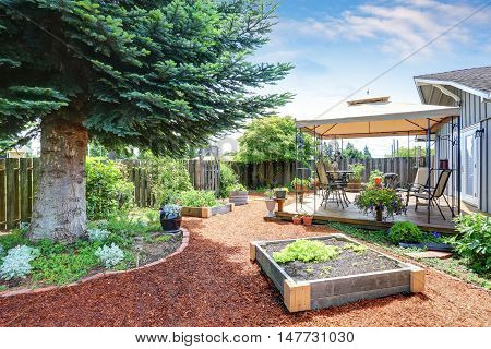 Small Garden Beds At The Backyard.