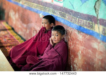 LADAKH, INDIA - JUNE 11, 2012: Young Tibetan Buddhist monk praying in Thiksey gompa of the Yellow Hat (Gelugpa sect).