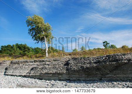 Eroded coastline at the swedish island Oland in the Baltic Sea