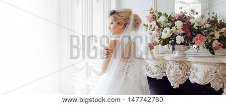 Charming young bride in luxurious wedding dress. Pretty girl, the photo Studio. Back. Soft blur place for your text on the left