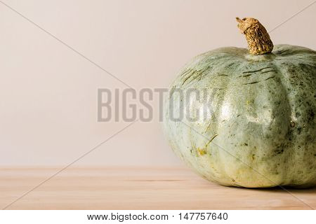 Bluish-green pumpkin right from the pumpkin patch with a touch of glitter to glam it up.