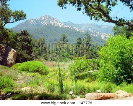 Santa Barbara Countryside