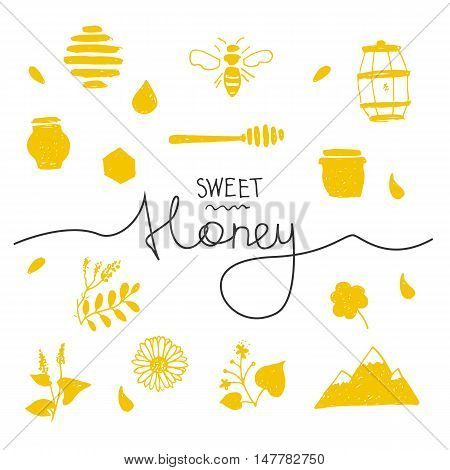 Design elements honey in hand drawn style with lettering.
