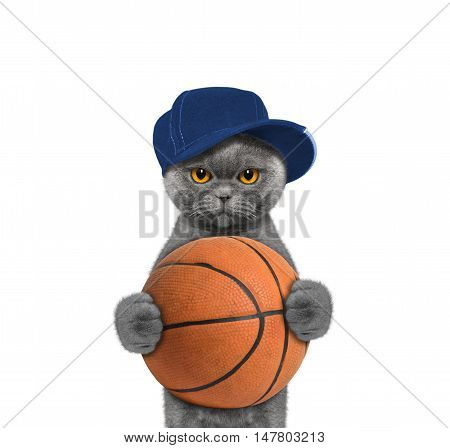 Cute cat in cap holding a ball -- isolated on white