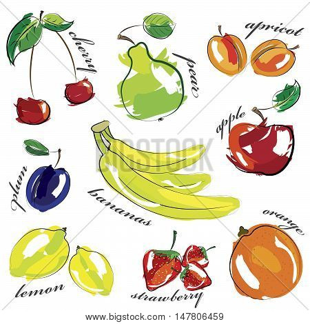 Fruit set icons isolated on white background. Vector