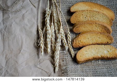 Rusk white dry bread on canvas and paper background and rye ripe spikelets