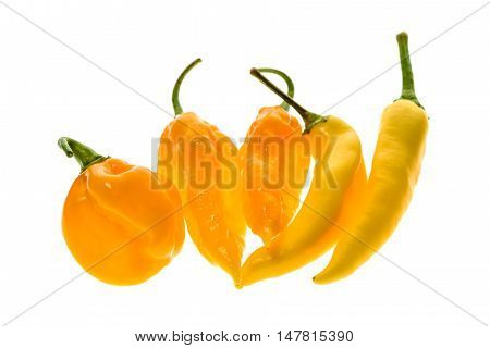 Different Variety Of Yellow Hot Peppers - A Bunch Of Chilies,