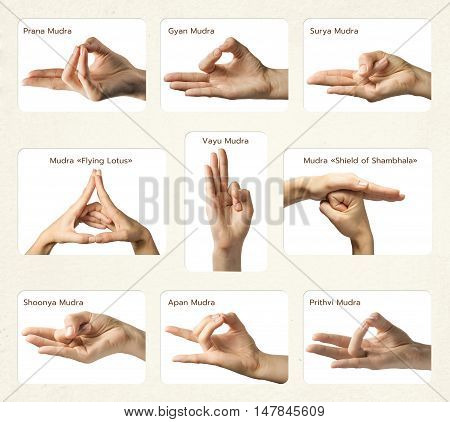 set of 9 mudras. It includes such mudras: Prana mudra Gyan mudra Apan mudra Prithvi mudra Surya mudra Shoonya mudra Vayu mudra Mudra