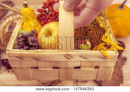 Rustic wooden basket with fall products - Farmer holding with its hand a small wooden basket full with agricultural products.