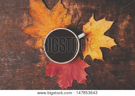 Autumn Fall Background with maple leaves and cup of black coffee - Autumn Card for your design top view with copy space
