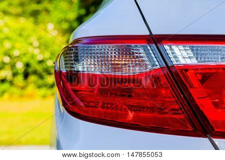 Backlight Of White Car