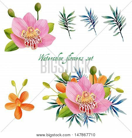 Watercolor floral set for your design. Vector illustration .