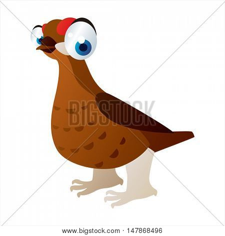 vector funny animal cute character illustration. Partridge