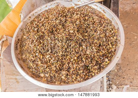 Fried ants selling at the local Thai market or street market Northeast of Thailand