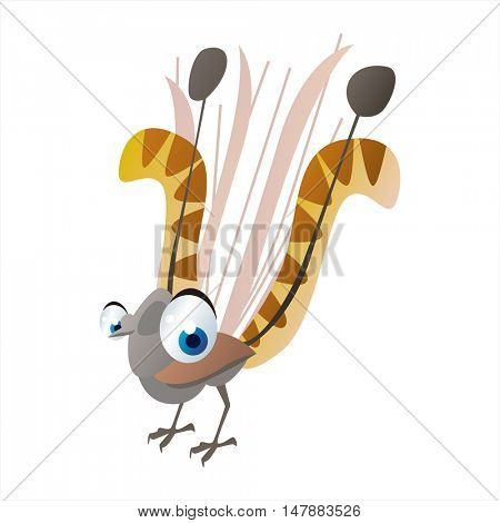 funny vector illustration of cute animal. Cartoon Lyrebird