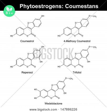 Phytoestrogens of coumestane group chemical formulas and molecular models 2d chemical vector eps 8