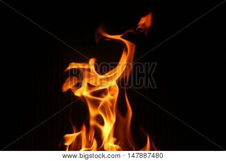 strong fire burning on a black background flame burns in the fireplace frozen light