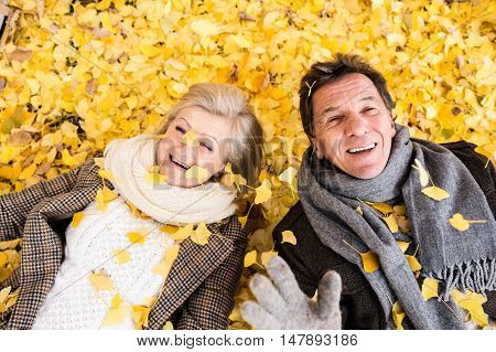 Active senior couple in autumn park lying on the ground covered with yellow leaves