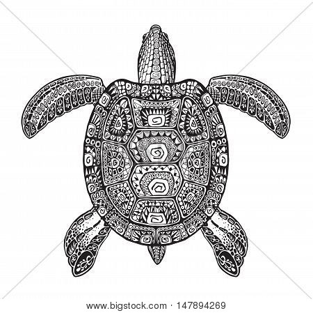 Terrapin, turtle painted tribal ethnic ornament. Hand-drawn vector illustration with decorative patterns
