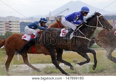 Pyatigorsk, Russia - September 18,2016: Start horse race for the prize of the Stilistiki, Russia's largest hippodrome in Pyatigorsk,Caucasus,Russia  on September 18,2016.