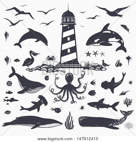 big set of sea creatures and marine animals isolated on white: dolphins, whales, shark, fish, sea birds, octopus