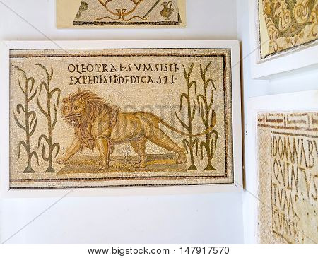 TUNIS TUNISIA - SEPTEMBER 2 2015: The mosaic of the menacing lion walking among the plants in Bardo National Museum on September 2 in Tunis.