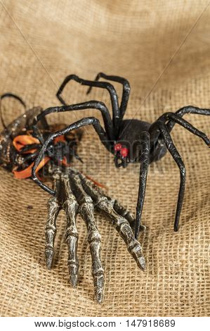 Black widow spider and skeleton hand Halloween decor