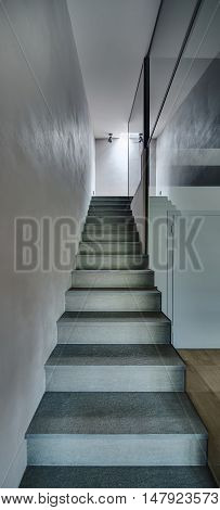 Stair to the top in the room in a modern style with light walls. To the right of the stair there is a glass wall. At the top there are lamps, on the floor there is a parquet. Vertical.