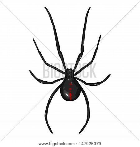 Vector Cartoon Black Widow Spider