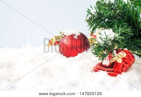 Red Chrismas Ball On Snow With Chrismas Tree Abstract Background