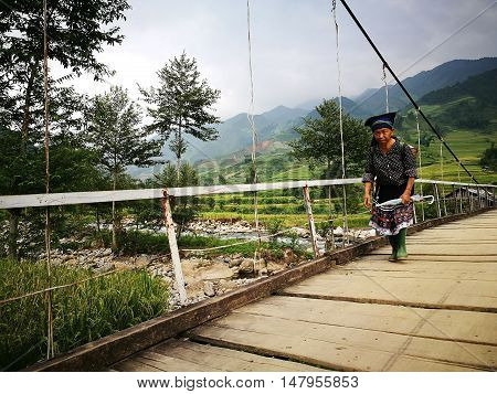 Mu Cang Chai, Vietnam - Sep 16, 2016: Hmong old woman walking on a wooden hanging bridge from her village to the traditional market.